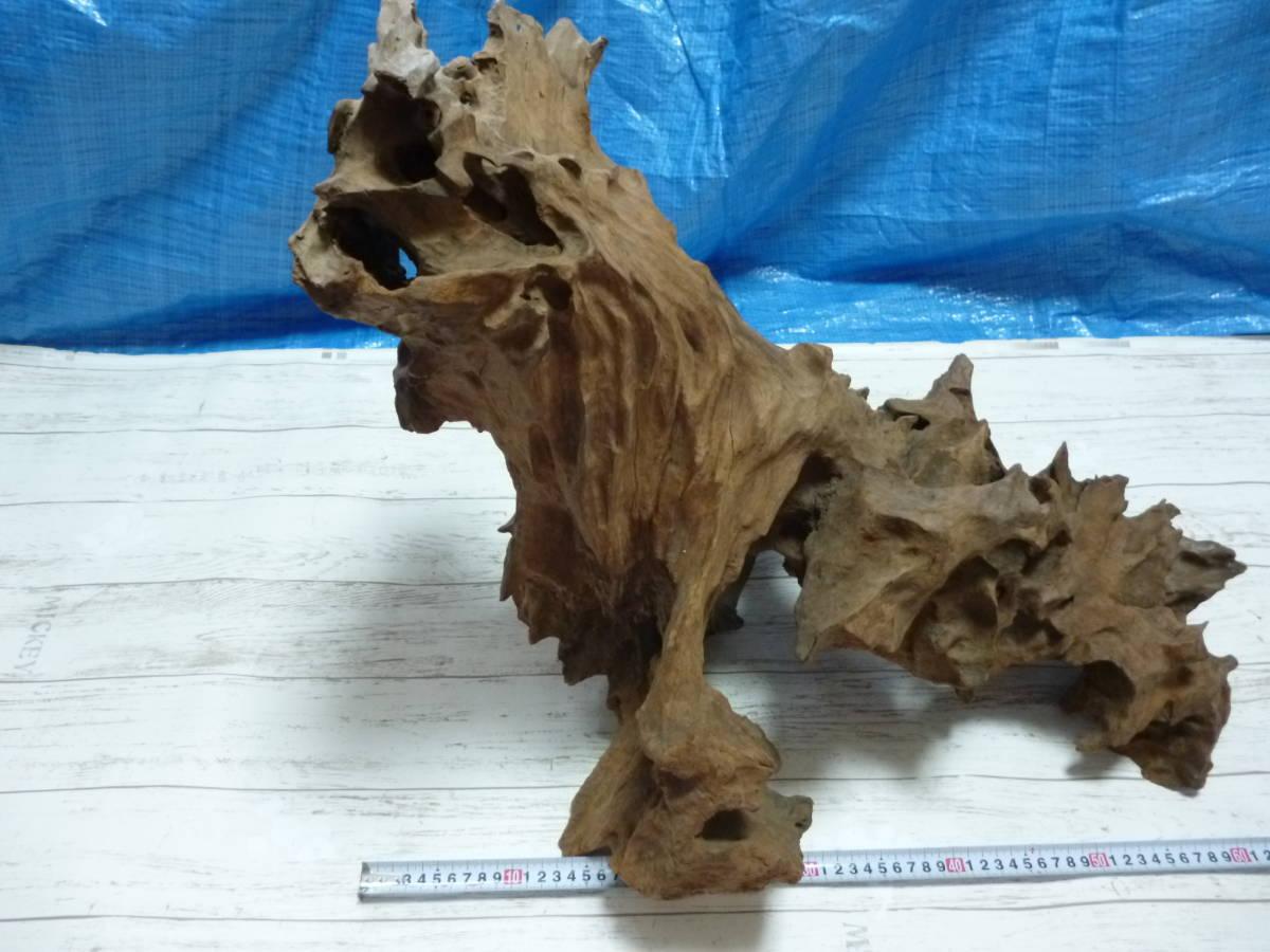 流木 大き目 H50×W60×D46 cm 。_画像7
