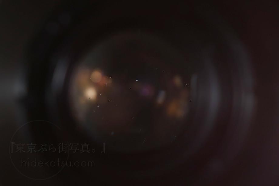 銘玉フレクトゴン 35mm ゼブラ【分解清掃済み・撮影チェック済み】Carl zeiss jena / Flektogon F2.8 35mm M42_69f_画像9