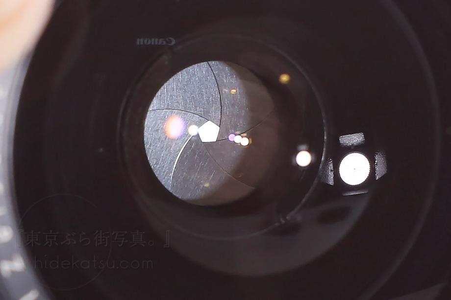 銘玉フレクトゴン 35mm ゼブラ【分解清掃済み・撮影チェック済み】Carl zeiss jena / Flektogon F2.8 35mm M42_69f_画像7