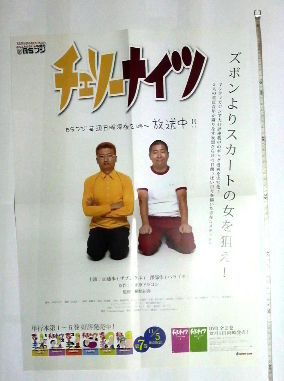 チェリーナイツ 宣伝ポスター 小田原ドラゴン著 加藤歩 澤部佑_画像1