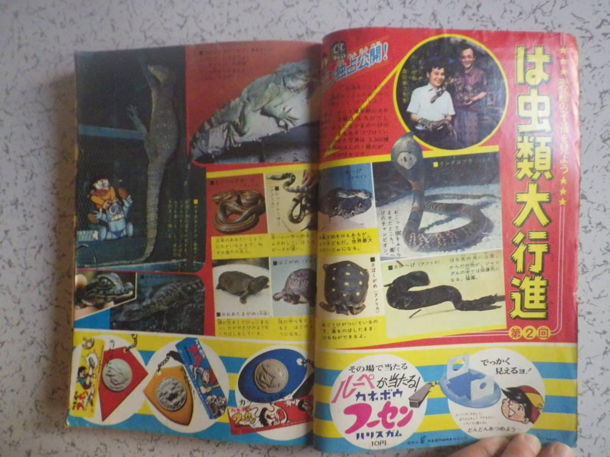 1966年発行 週刊少年マガジン 38、9月25日号 宇宙少年ソラン、黄色い手袋X、ウルトラマン、サイボーグ009 など_画像5