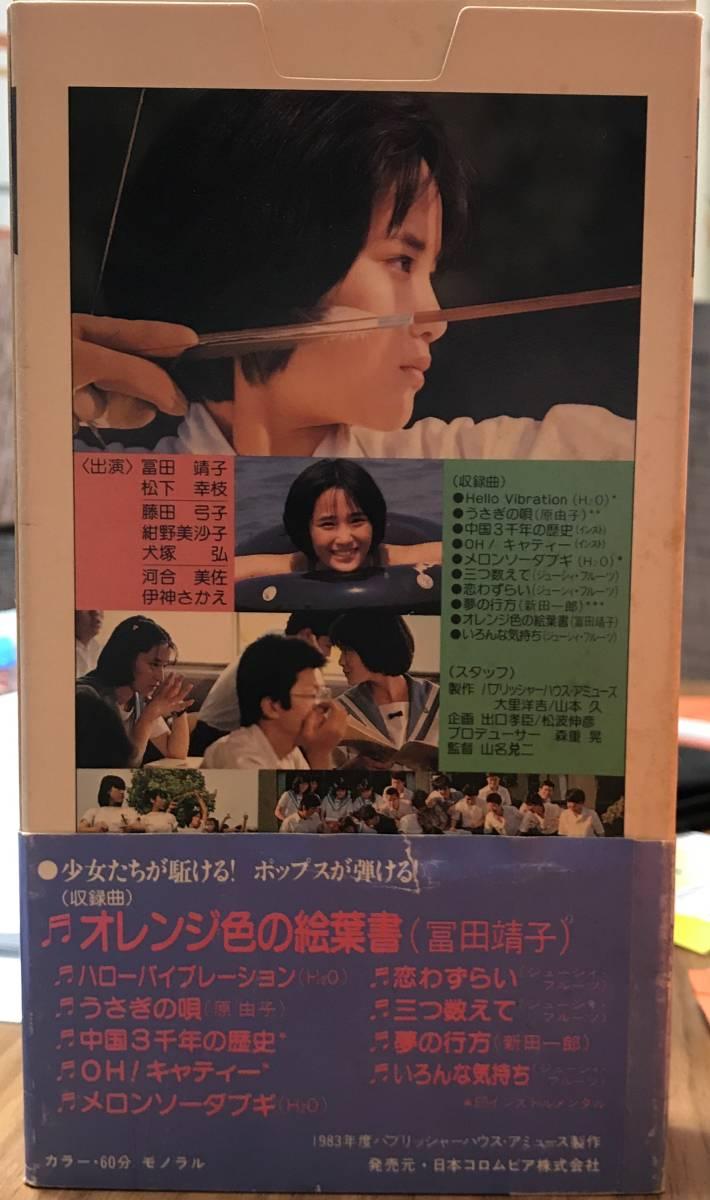 グッドバイ夏のうさぎ VHS 冨田靖子_画像3