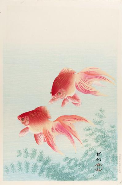 小原古邨 「金魚」 40.8×27cm 複製 Ohara Koson ◆新版画 川瀬 巴水 吉田博