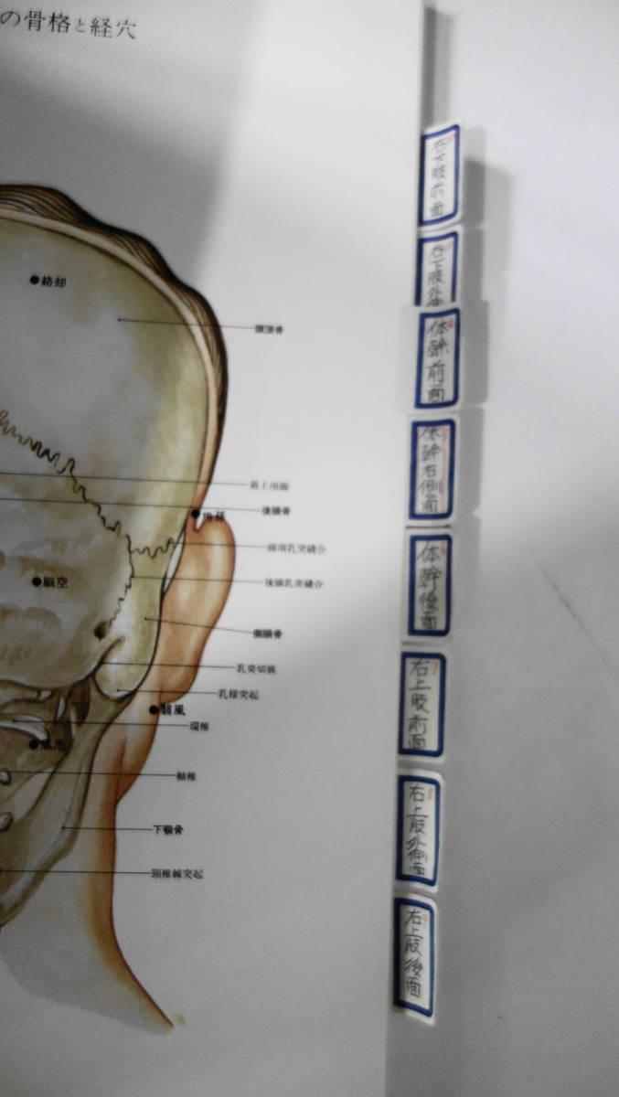 東洋医学 鍼灸経絡治療/はり入門/経絡と指圧/針灸治療の実際/解剖經穴図/中国気功法など 34冊まとめて_画像9
