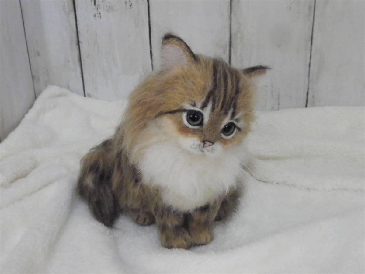 funwari■□■ 羊毛フェルト 仔猫 ふわり ペルシャ猫 チンチラゴールデン おすわりポーズ ハンドメイド_画像5
