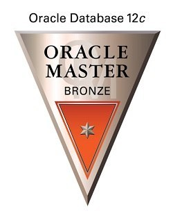 ☆★合格への最短ルート Oracle Database 12c SQL基礎 (1Z0-061 ) 日本語問題集☆★