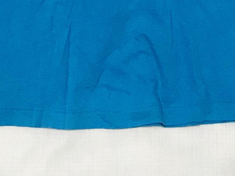 80sビンテージ ヘインズ BEEFY-T ハワイ カレッジ Tシャツ USA製 レアカラー HAWAII 大学 オリジナル 80年代 HANES アメリカ製 古着 米国製_フロントの裾に1つ小さなキズ穴があります