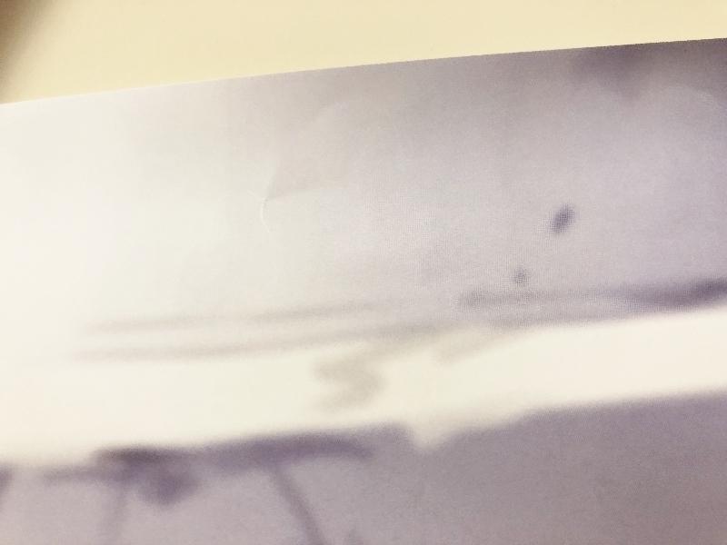 064H881★東方Project 献血×博麗神社秋季例大祭 ポスター フランドール スカーレット べにしゃけ 2015年 非売品★中古品_画像5