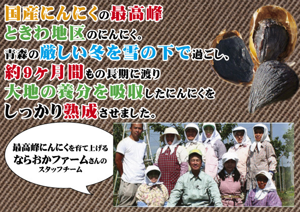 熟成 黒にんにく(ニンニク)100g×5 青森県産ホワイト6片種使用_画像2