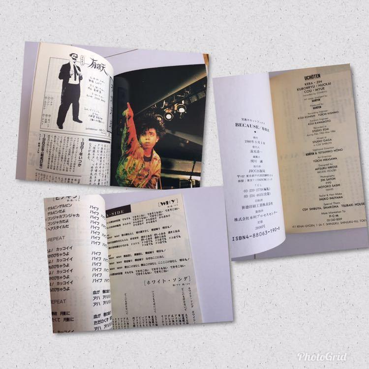 有頂天 BECAUSE ビコーズ 宝島カセットブック ケラリーノ・サンドロヴィッチ しりあがり寿 ひさうちみちお いとうせいこう 1980年代 バブル_画像7