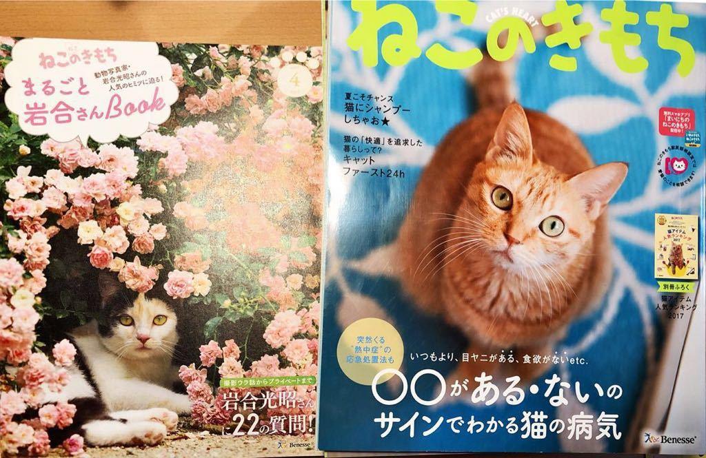 ねこのきもち 2017年2月-2018年1月 (2冊抜けあり)10冊プラス付録冊子☆ 猫の気持ち ネコのきもち_画像4