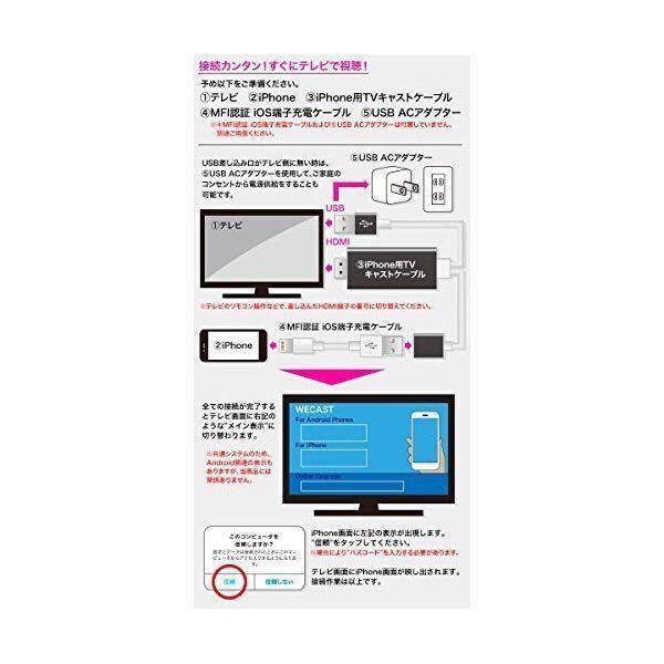 ★送料無料★iPhone用TVキャストケーブル 新品_画像3