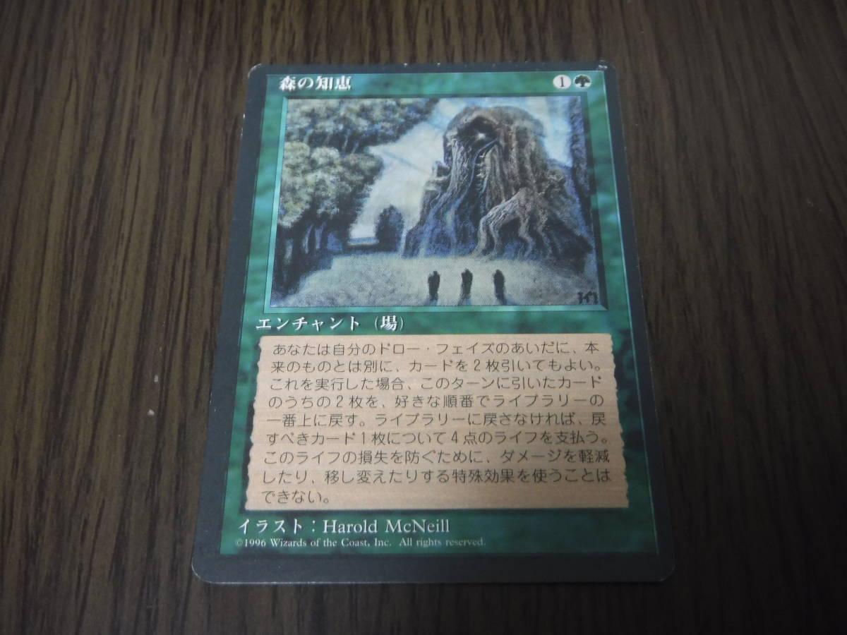◆MTG 基本セット第4版 森の知恵 日本語 黒枠 1枚 送料62円~◆