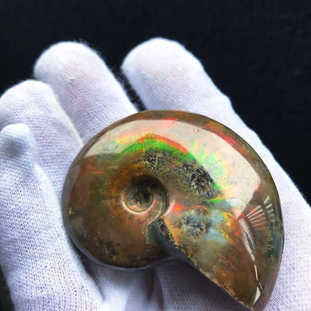非常に綺麗なオパール化 アンモナイト化石 66g 多彩な発色が特徴的な虹色の遊色 マダガスカル産 ピカピカ磨き_画像2