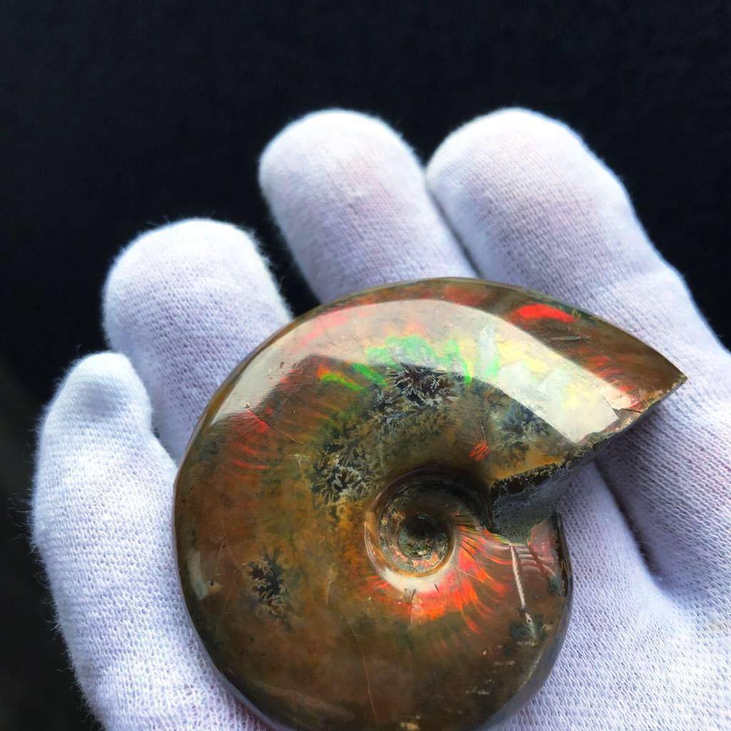 非常に綺麗なオパール化 アンモナイト化石 66g 多彩な発色が特徴的な虹色の遊色 マダガスカル産 ピカピカ磨き_画像8