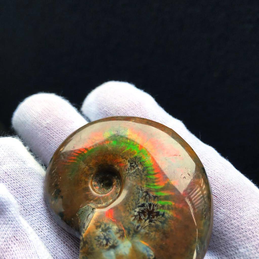 非常に綺麗なオパール化 アンモナイト化石 66g 多彩な発色が特徴的な虹色の遊色 マダガスカル産 ピカピカ磨き_画像10