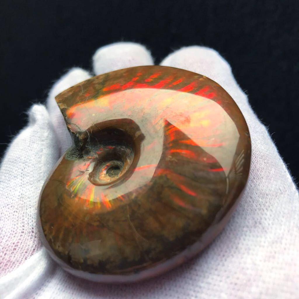 真っ赤で非常に綺麗なオパール化 やや大きめアンモナイト化石 85g 多彩な発色が特徴的な虹色の遊色 マダガスカル産 ピカピカ磨き_画像3