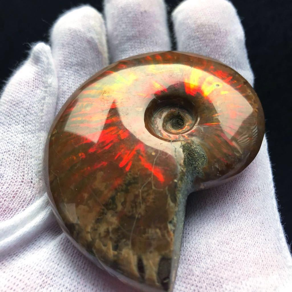 真っ赤で非常に綺麗なオパール化 やや大きめアンモナイト化石 85g 多彩な発色が特徴的な虹色の遊色 マダガスカル産 ピカピカ磨き_画像5