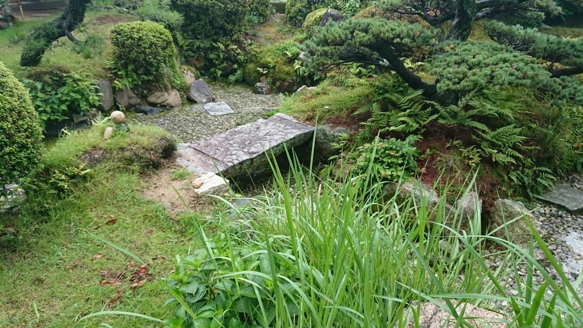 裏にある庭は梅雨の時期だけ水が溜まります