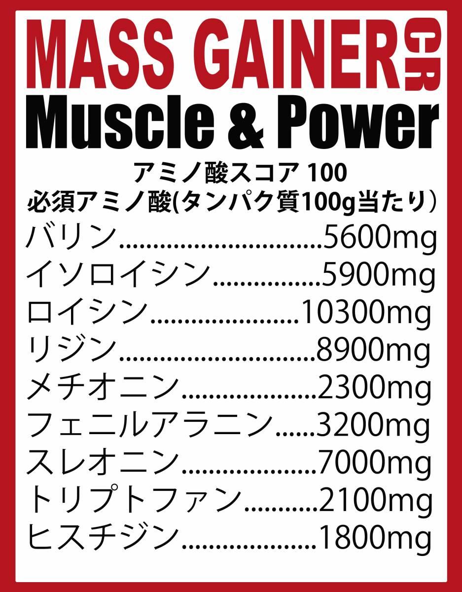 [1kg]マスゲイナーCR・ウエイトゲイナー・タンパク質・Wカーボ&クレアチン配合・ (ミルクチョコレート味) ホエイプロテイン 1kg 持久系_画像4
