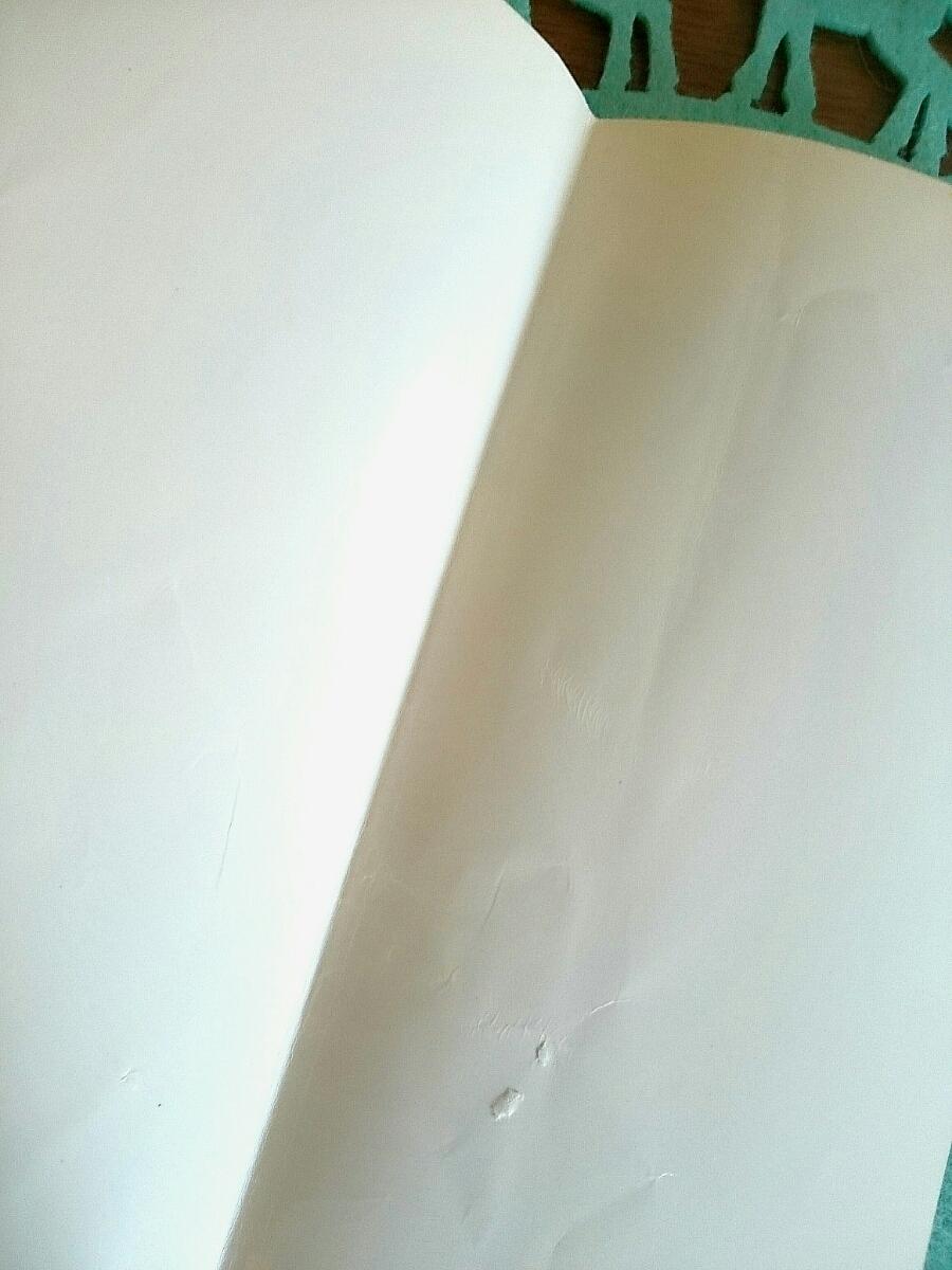 【懐かしい!】アメブロ Amebaブログ ブログ書籍 エッセイ きらきら研修医 ①・②巻セット 織田うさこ 幻冬舎 アメーバブックス _画像8