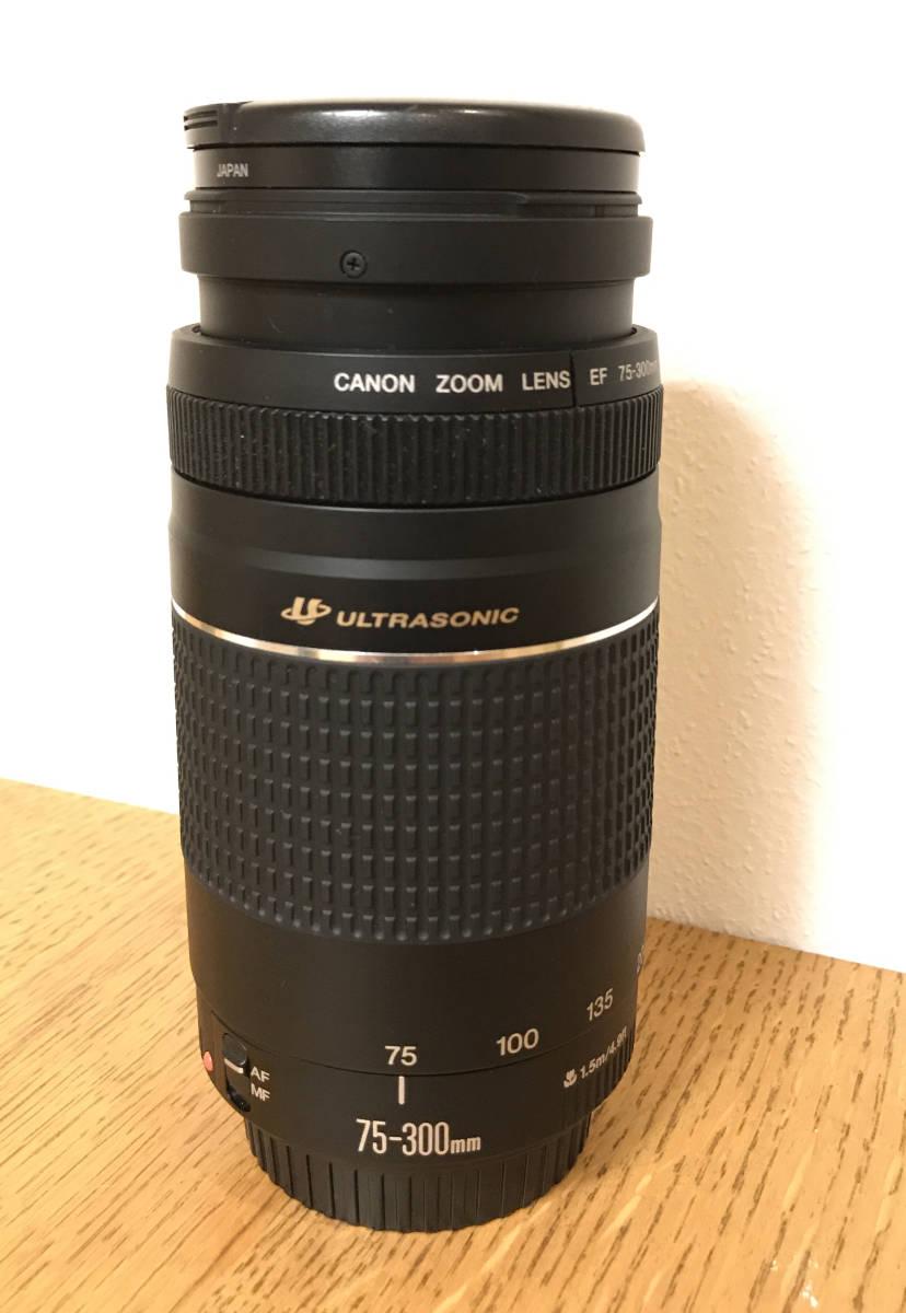 Canon EOS 5D_画像3