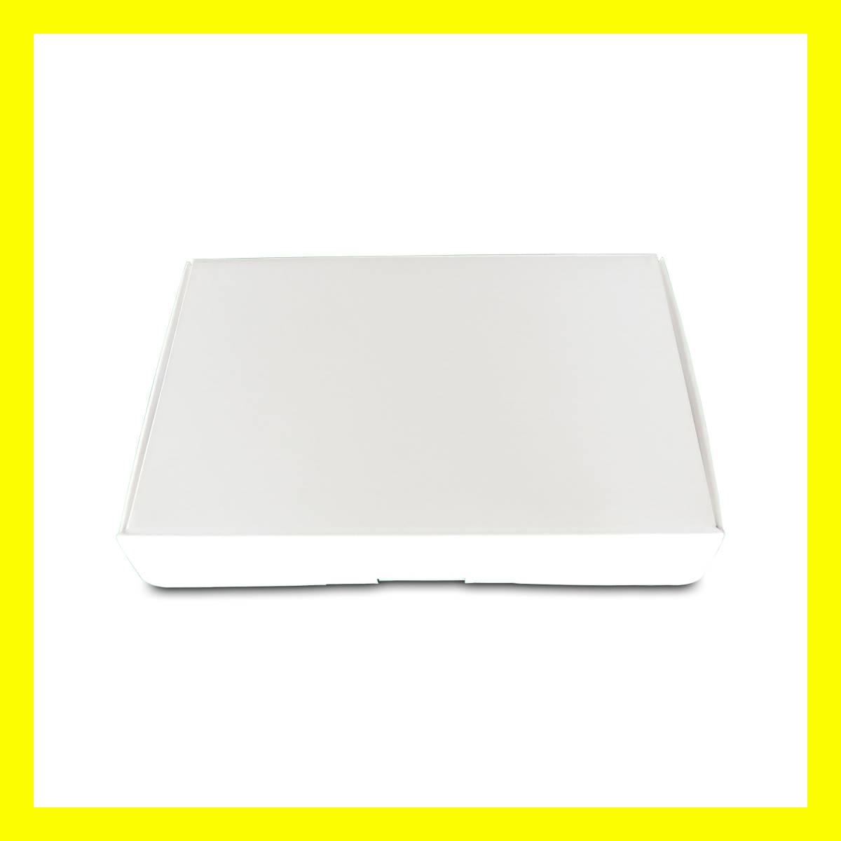 任天堂 3DS 開発用実機 - Dev Kit Test Unit PANDA_画像6