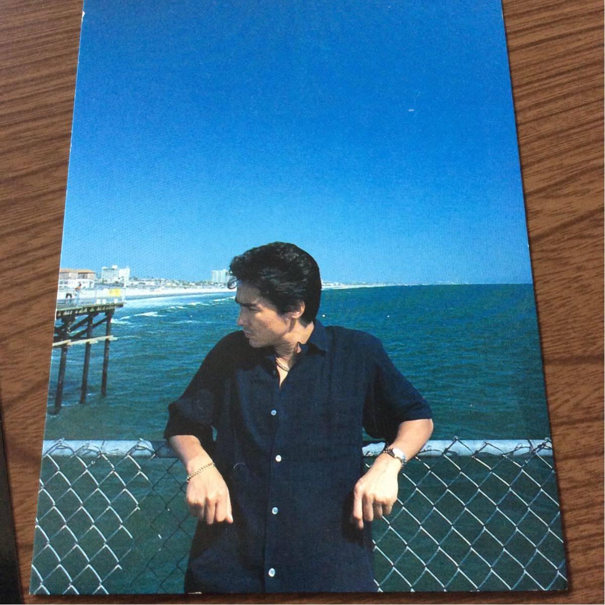 送料無料 郷ひろみ 写真 ポストカード POST CARD 10枚 Hiromi GO_画像6