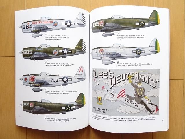 洋書◆P-47 サンダーボールト写真集 本 飛行機 軍用機 戦闘機 アメリカ 空軍_画像2