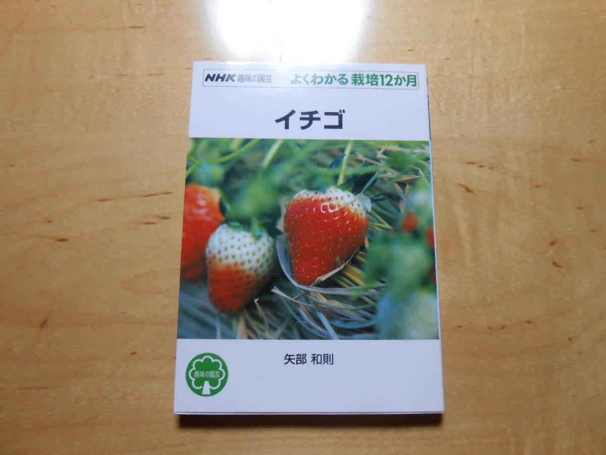 イチゴ NHK 趣味の園芸 よくわかる栽培12か月