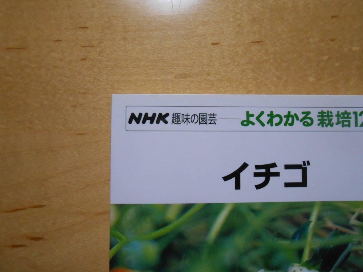 イチゴ NHK 趣味の園芸 よくわかる栽培12か月_画像4