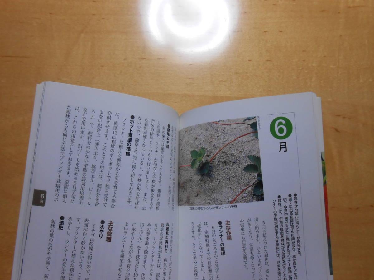 イチゴ NHK 趣味の園芸 よくわかる栽培12か月_画像9