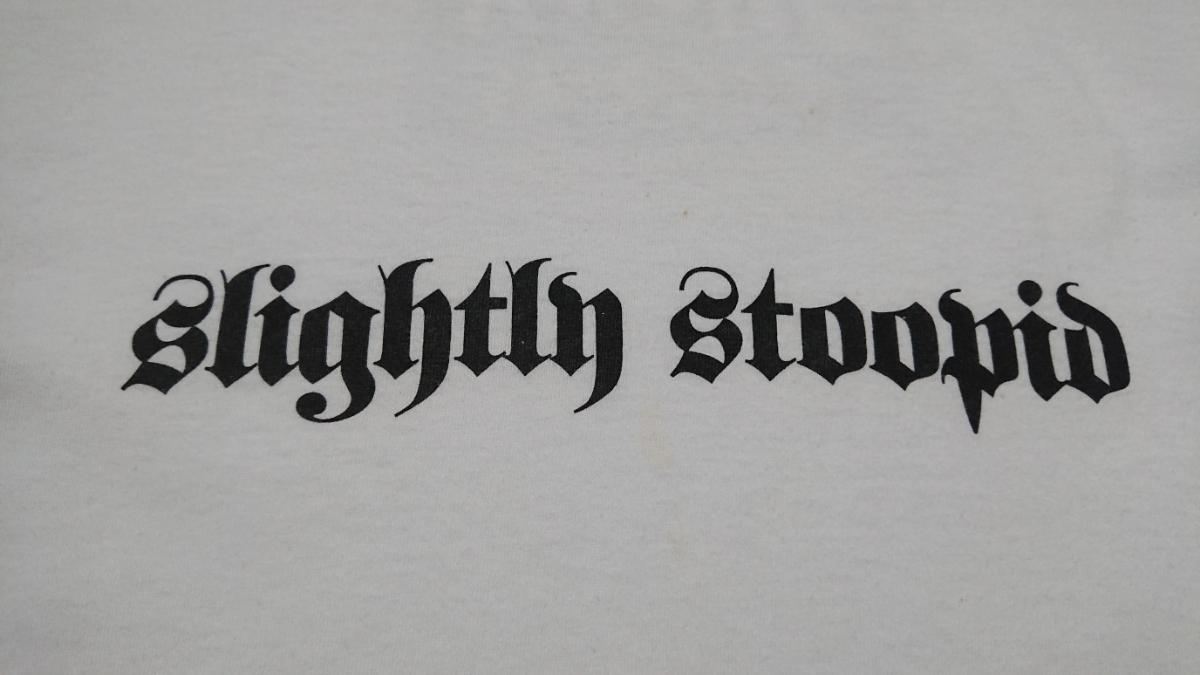 Hanes製 slightly stoopid Tシャツ USED XL / SUBLIME skunk records ziggens jack johnson nofx cypress hill voodoo glow skulls _画像4