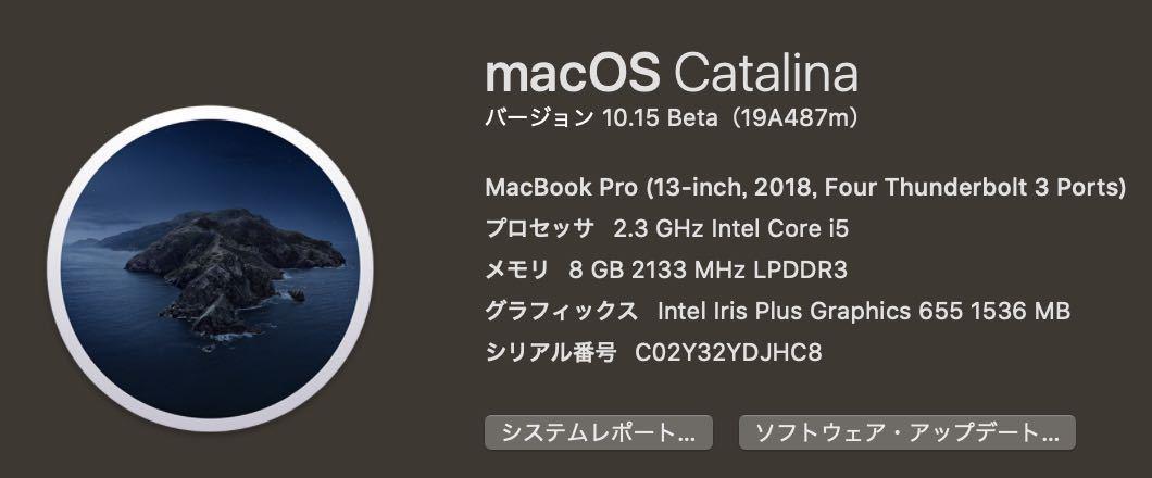 【美品】Macbook pro 2018 13インチ TouchBar搭載モデル AppleCare残2年以上 i5/256GB/8GB【送料無料】レザーケース付き_画像5