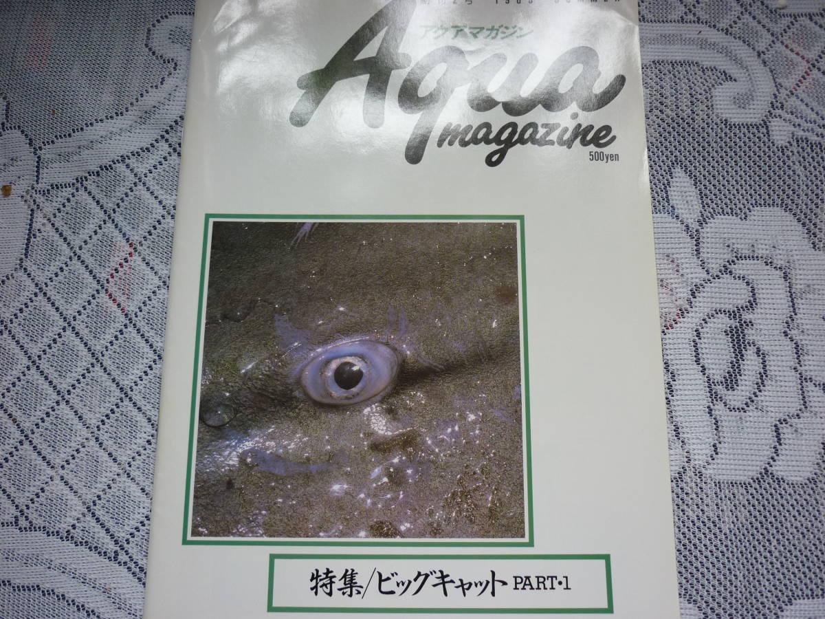 アクアマガジン 創刊2号 Aqua magazine 1989 SUMMER 特集 ビッグ・キャット PART1 _画像1