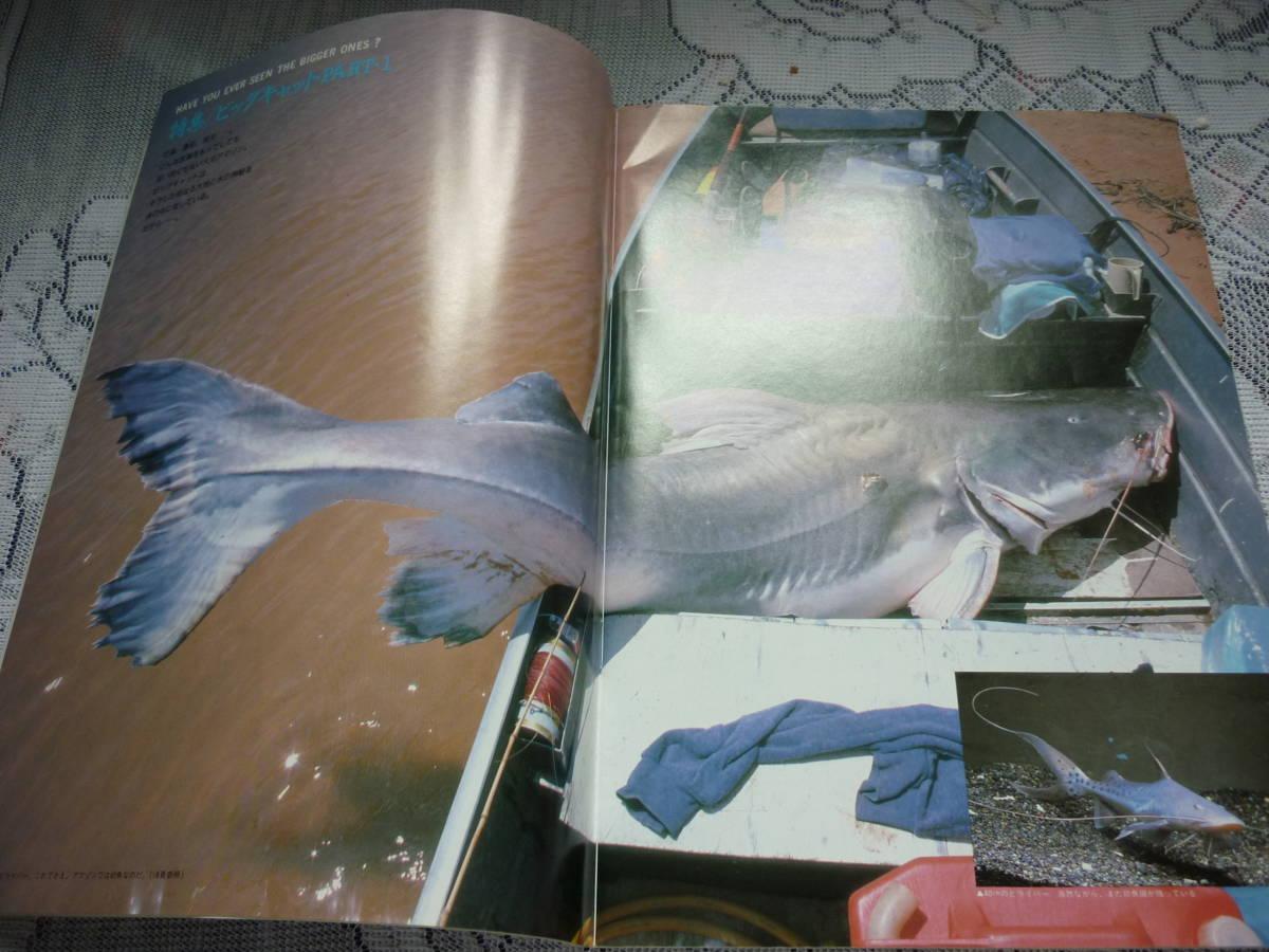 アクアマガジン 創刊2号 Aqua magazine 1989 SUMMER 特集 ビッグ・キャット PART1 _画像2
