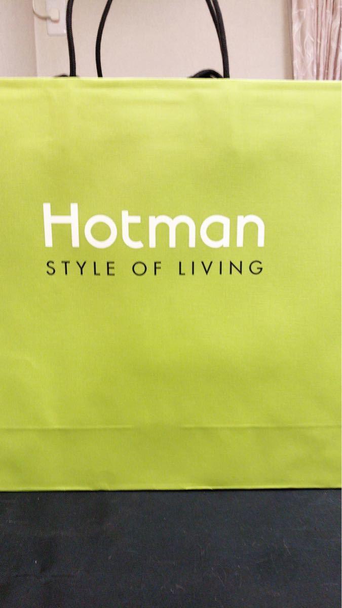 ★ 新品 未使用 ホットマン バスタオル 2枚組^_^★_画像3