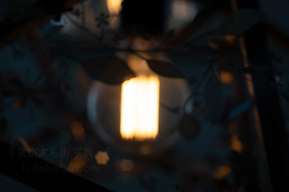 美品)星ボケのインダスター【分解清掃済み・撮影チェック済み】 Industar-61 L/Z 50mm F2.8 M42 各社用マウントプレゼント有_58i