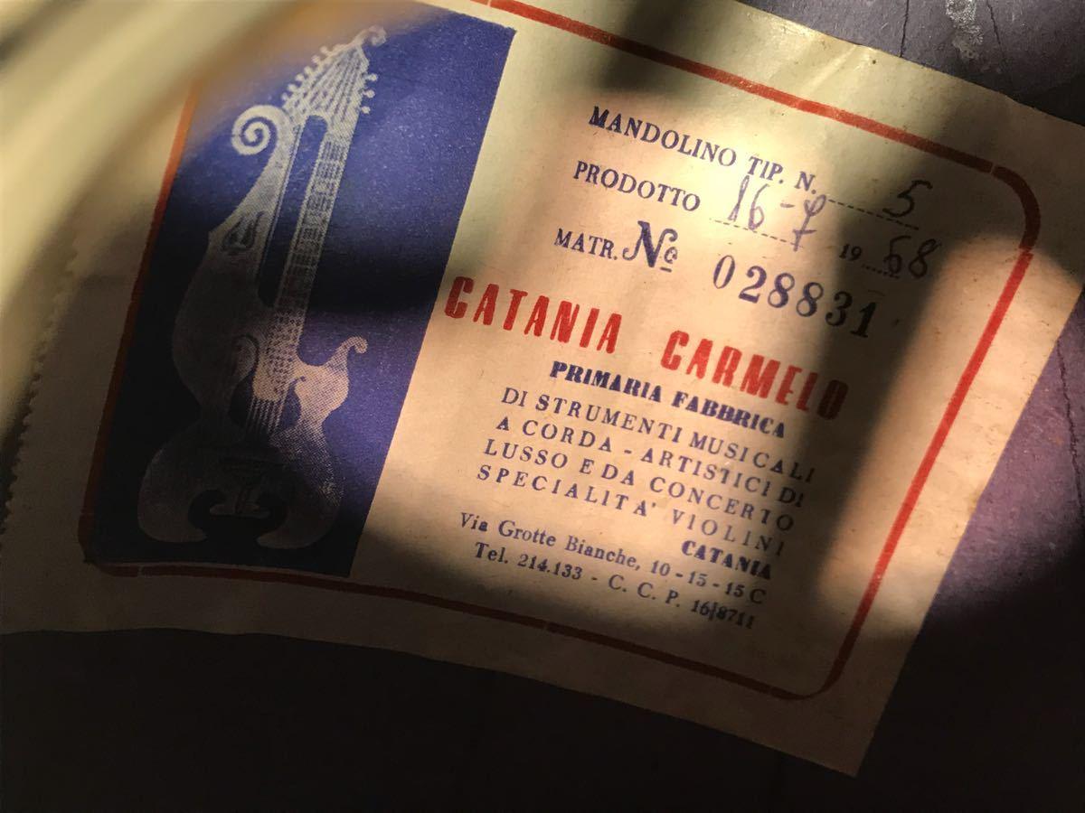 CATANIA CARMELO マンドリン MANDOLIN 1968年 ビンテージ アンティーク ハードケース付き 弦楽器_画像4