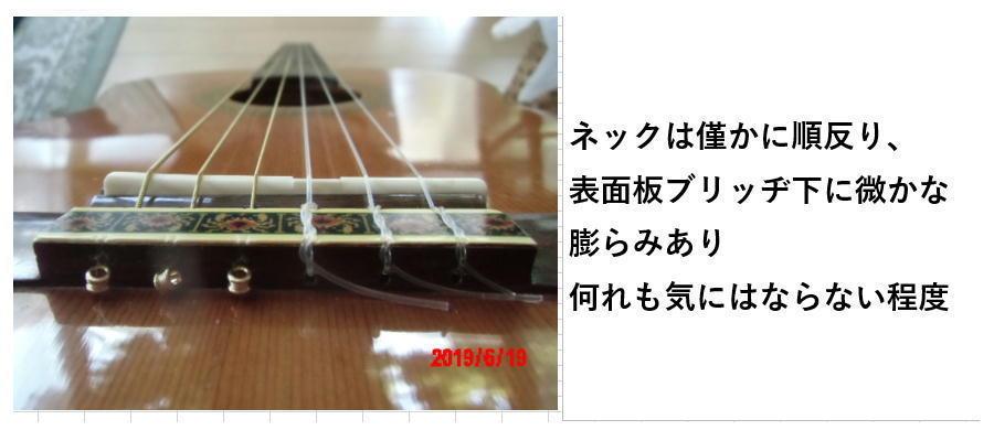 YAMAHA gc-5 原田氏_画像3