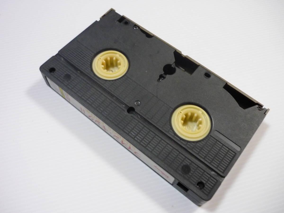 【送料無料・当時物】VHS ビデオ / ディズニー / ライオン・キング 2 / 二か国語版