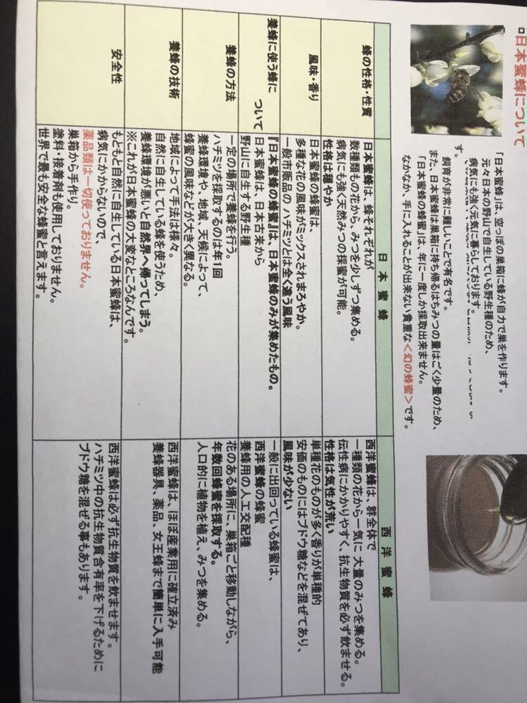 日本蜜蜂の生蜂蜜、ハチミツ、はちみつ_画像4