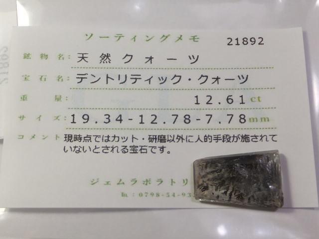 【21892】鉱物のふしぎ・天然デントリティッククォーツ12.61ct ソーティングメモ付き_画像8