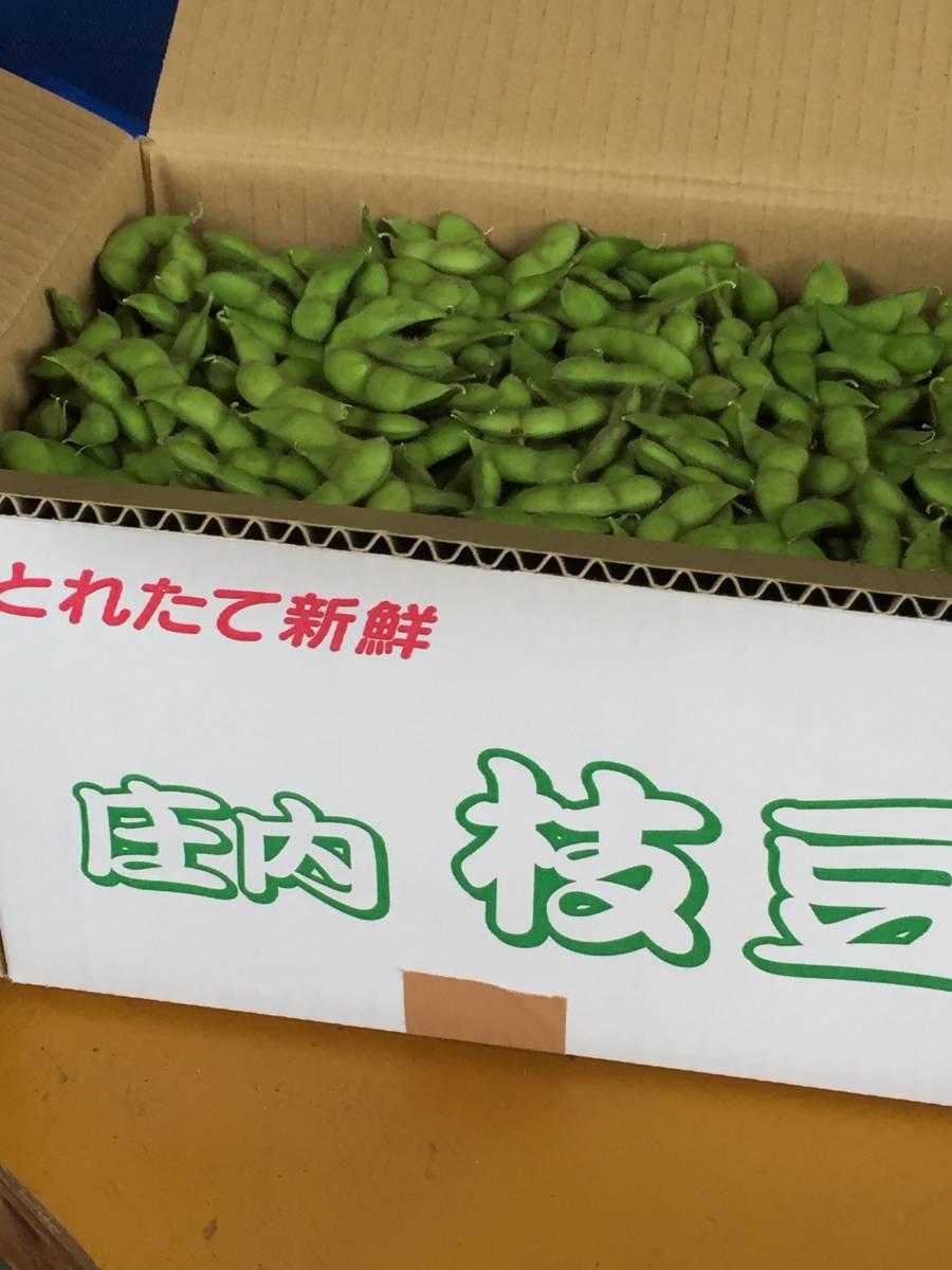 ☆☆☆【旬の味覚白山だだちゃ豆1.5kg箱詰】☆☆☆_画像3
