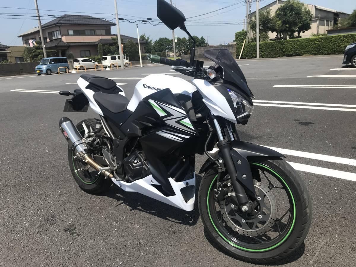 カワサキ Z250 2014年モデル 自賠責令和3年3月まで (ニンジャ ninja)