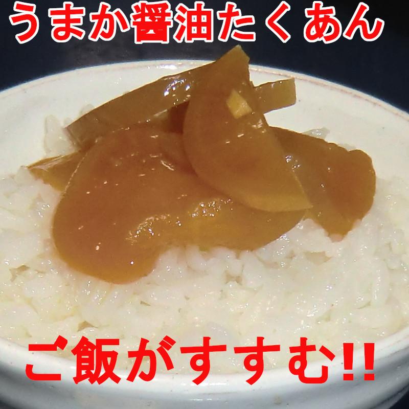 おかず3種2セット  梅っこきゅうり ごぼう たくあん ご飯のお供 おにぎり おつまみ 宮崎県産のお漬物 送料無料 _画像9