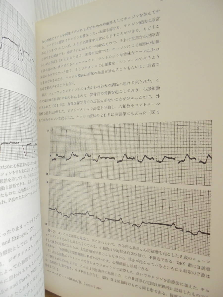 「犬の心電図 : 診断と治療のすべて 」 Gary R.Bolton 著、加藤元, 松原哲舟 訳、医歯薬 388p_画像5