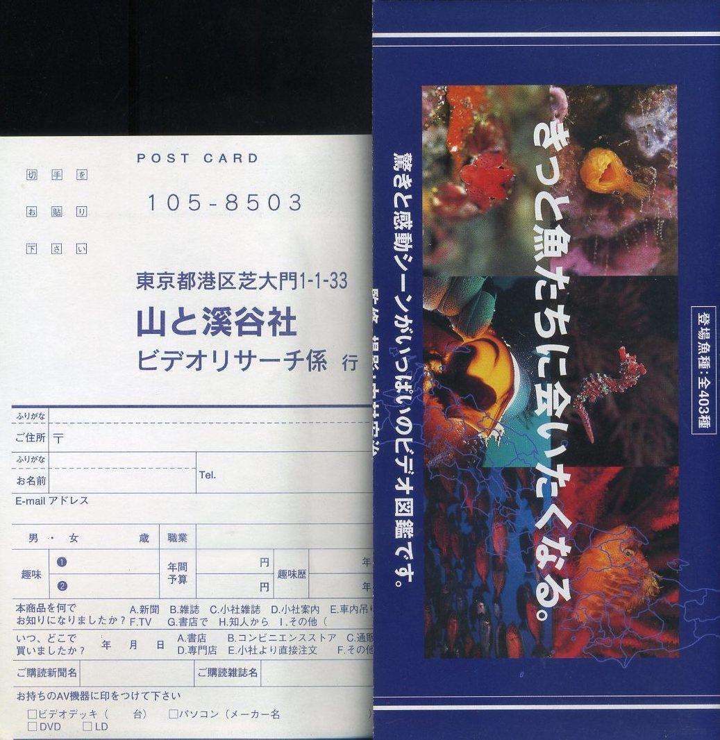 即決〈同梱歓迎〉VHS 日本海水魚図鑑 9 沖縄の魚たち 1 サンゴ礁域 チラシ・ハガキ付 ビデオ◎その他多数出品中∞3014_画像4