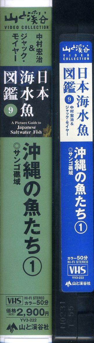 即決〈同梱歓迎〉VHS 日本海水魚図鑑 9 沖縄の魚たち 1 サンゴ礁域 チラシ・ハガキ付 ビデオ◎その他多数出品中∞3014_画像3