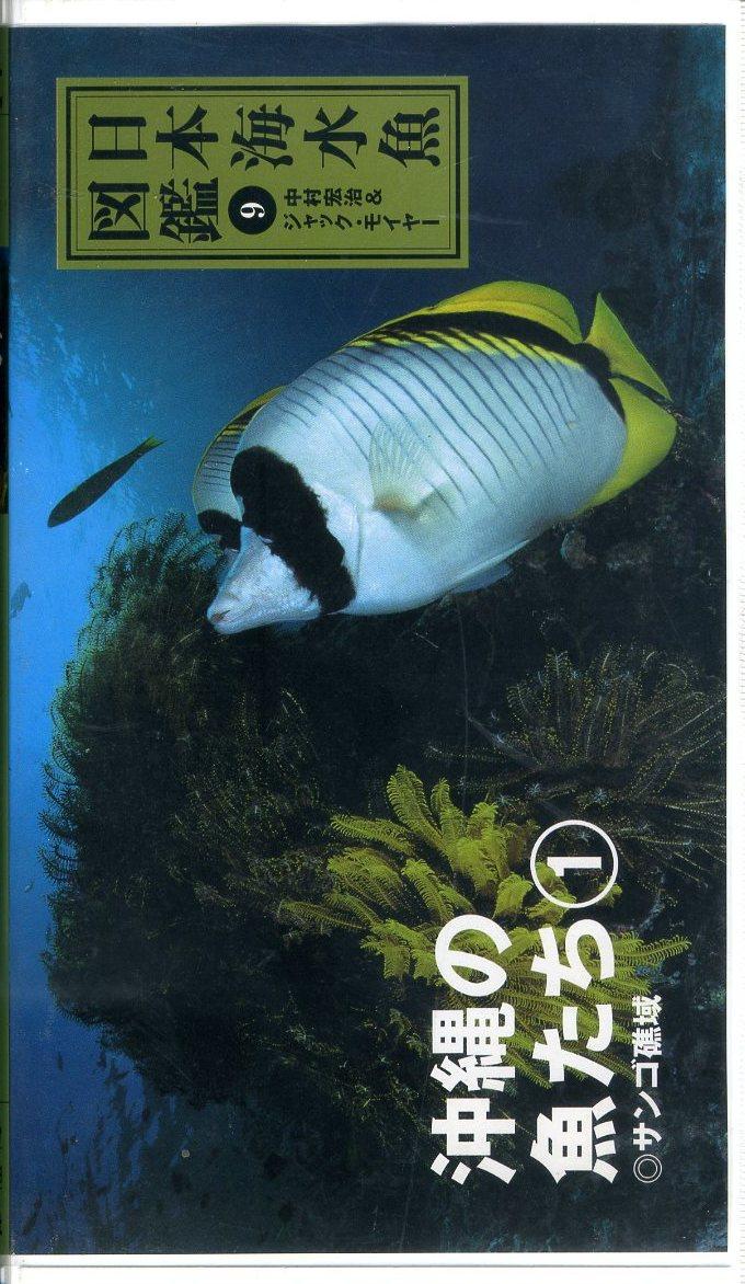 即決〈同梱歓迎〉VHS 日本海水魚図鑑 9 沖縄の魚たち 1 サンゴ礁域 チラシ・ハガキ付 ビデオ◎その他多数出品中∞3014_画像1